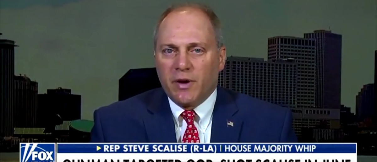Steve Scalise Shreds Law Enforcement Who Failed To Stop Broward School Shooting - Fox & Friends 2-26-18 (Screenshot/Fox News)