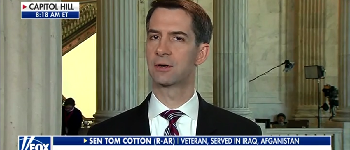 Tom Cotton Talks Tough On DACA on Fox & Friends 2-13-18