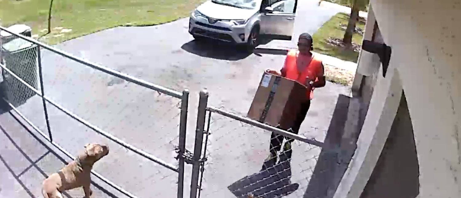 An Amazon driver recently delivered a package in a Miami, Fla., neighborhood, but instead of placing it nicely in a potentially secure area at the destination, he allegedly dropped the seven-pound parcel on a puppy.[Screenshot/Facebook/Public - User: Roly Andrade]