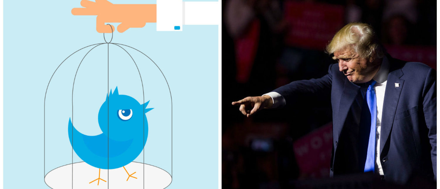 Left: Human hand holding a cage with a blue bird. [Shutterstock - Julia Tim] Right: MANCHESTER, NH - NOVEMBER 07: Republican presidential candidate Donald Trump points to supporters at the end of his rally at the SNHU Arena [Photo by Scott Eisen/Getty Images]