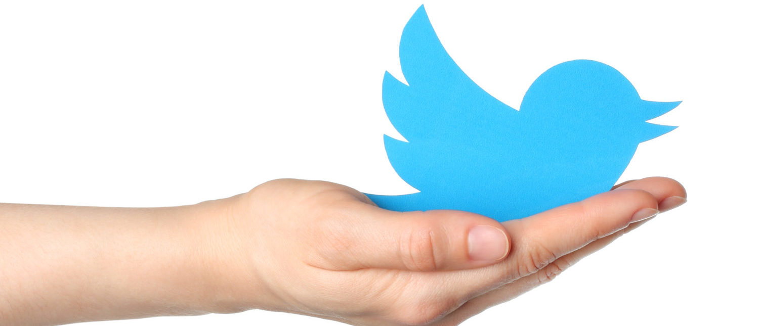A hand with the Twitter logo. [Shutterstock - rvlsoft]