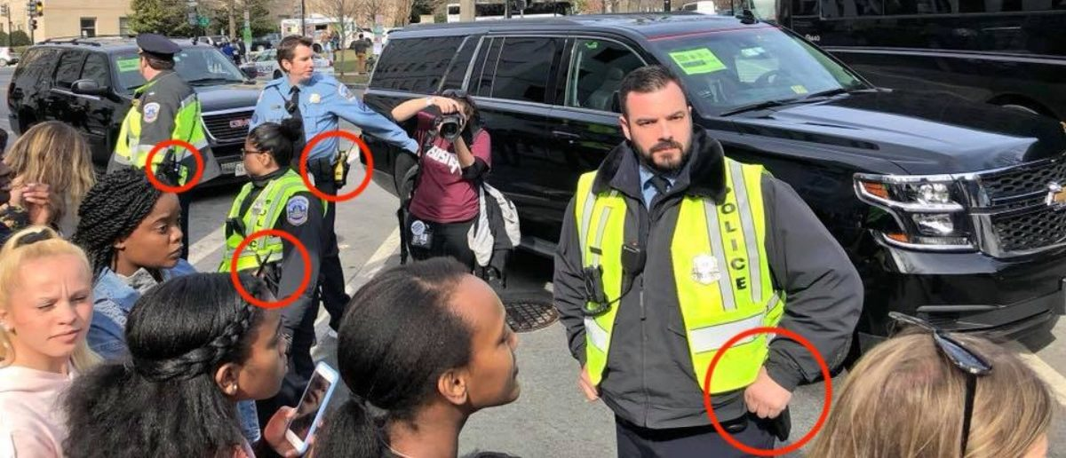 March For Our Lives Security (Benny Johnson/Daily Caller)