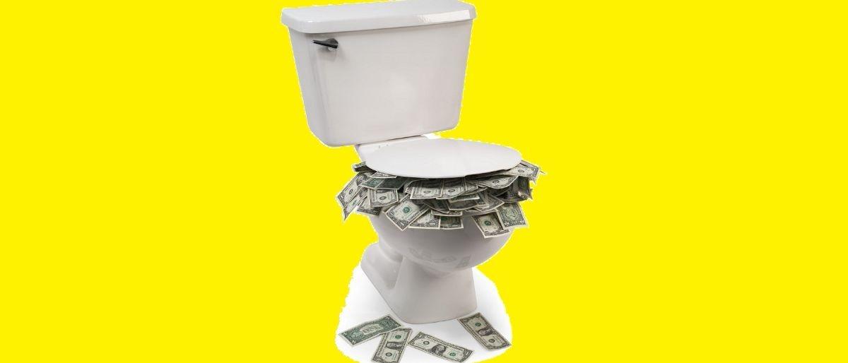 toilet money Shutterstock/James Steidl
