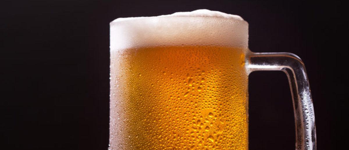 Beer (Credit: Shutterstock/Nitr)