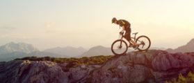 Mountainbiker (SHUTTERSTOCK: By lassedesignen)