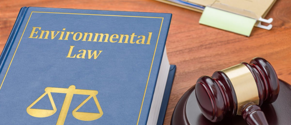 A law book with a gavel - Environmental law. (Shutterstock/Zerbor) | Environmental Reviews Take Longer In U.S.