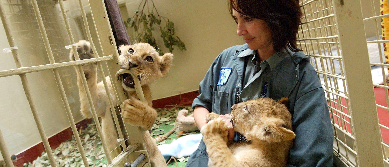 Washington: Zoologists (Getty)
