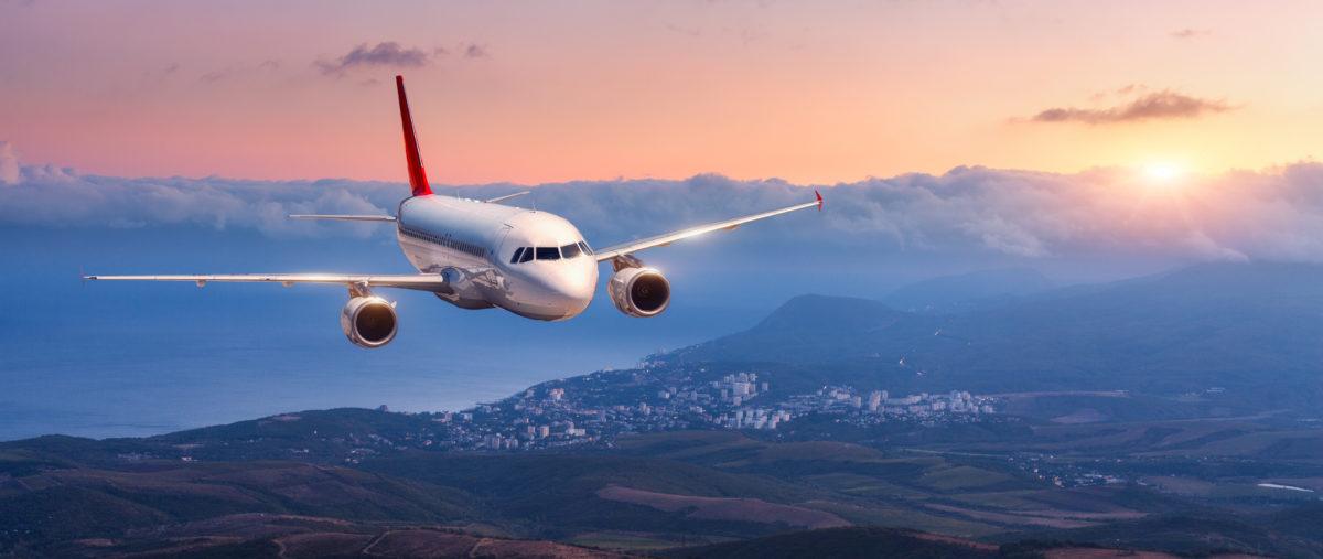 Passenger aircraft lands, a commercial plane. Shutterstock.