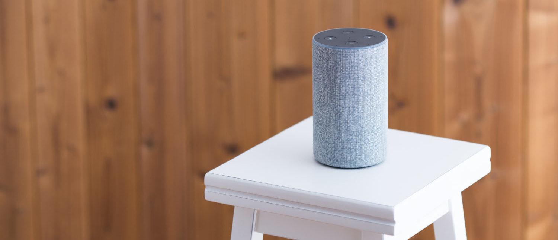 A smart speaker [Shutterstock - beeboys]