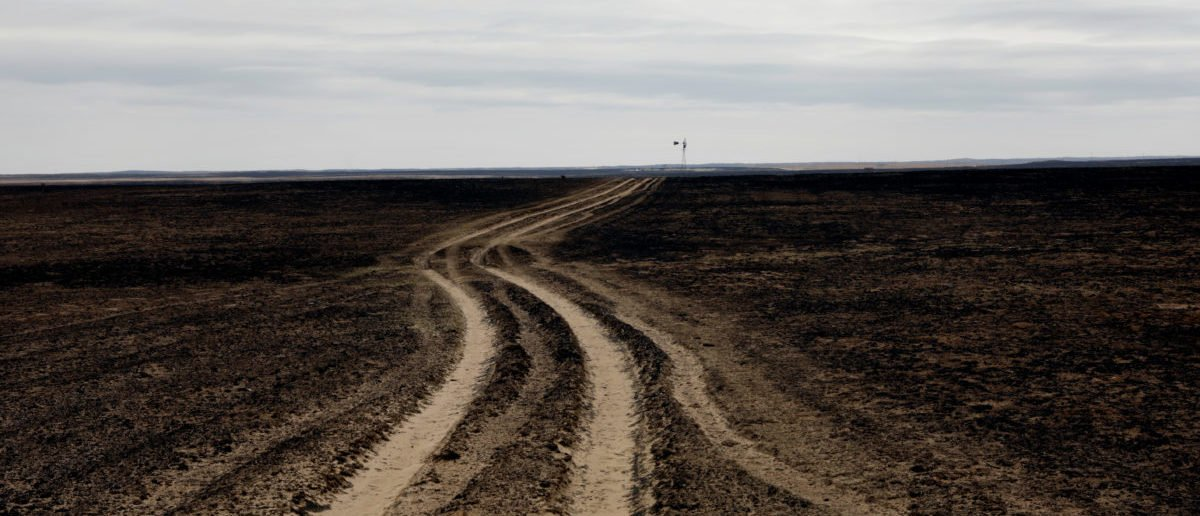 A country road leads through a pasture burned by wildfires near Glazier, Texas, U.S., March 12, 2017. REUTERS/Lucas Jackson
