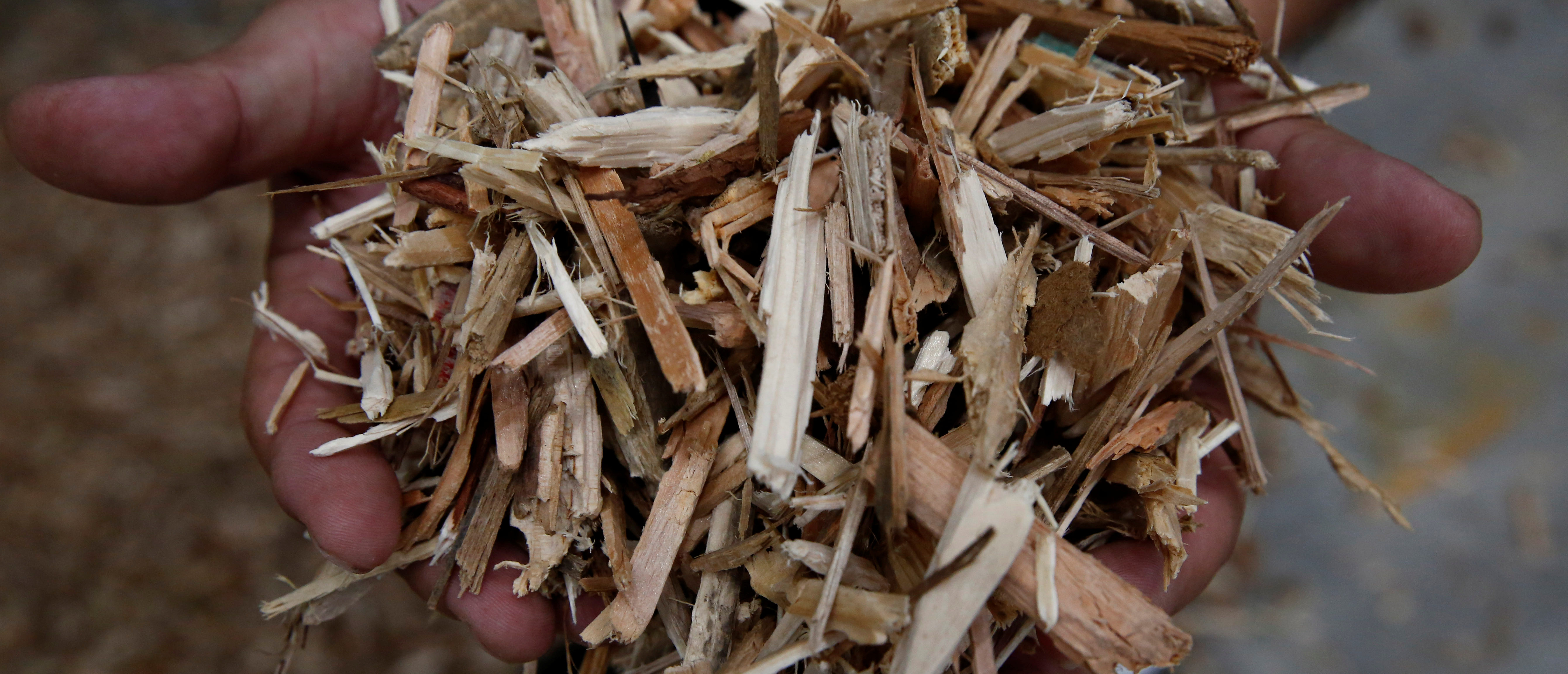 Collected wooden construction wastes are filed up at Eco Green Holdings's factory which makes wood chips from construction waste in Tokyo