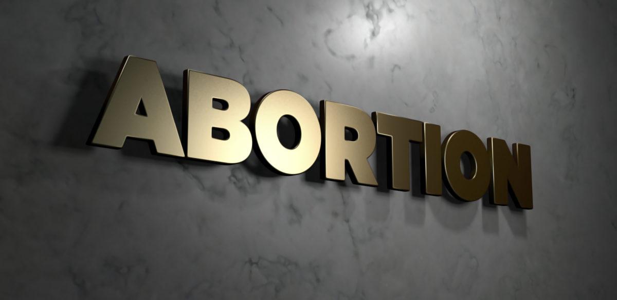 Abortion panel (Shutterstock/christitzeimaging) | College Students Determine Ireland's Vote