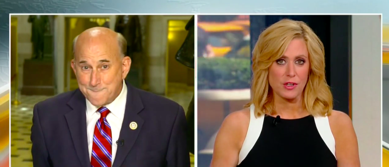 Gohmert compares Comey to Noah's Flood on leaks: 'Noah needs to build himself an ark' (Fox News Screenshot)