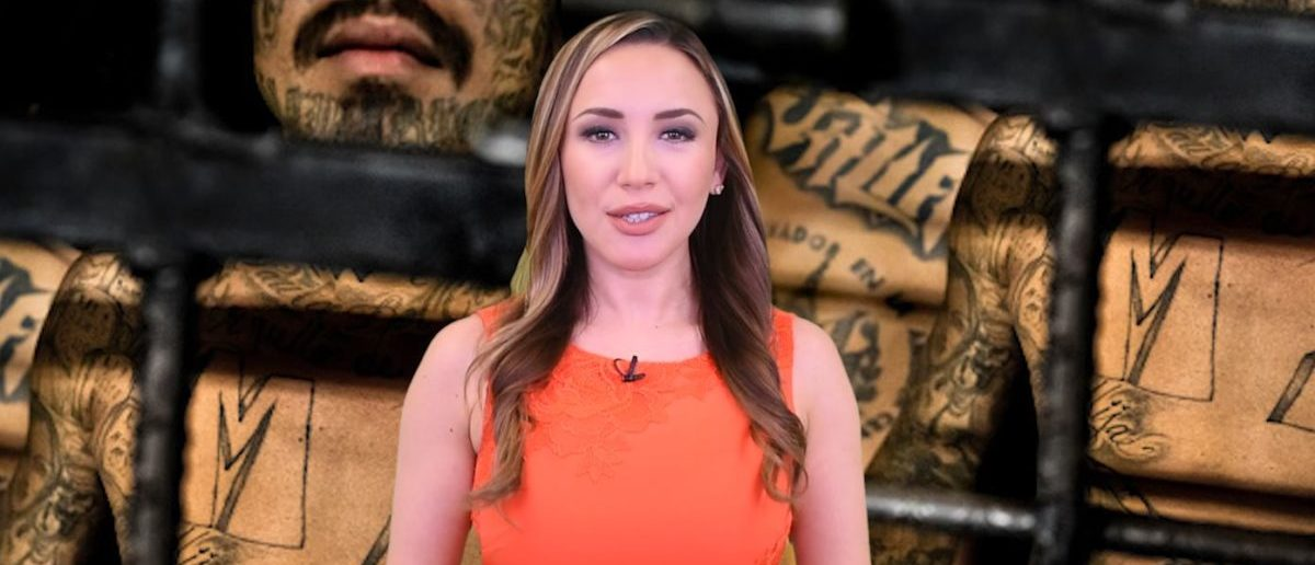 MS 13 Stephanie Hamill (The Daily Caller)