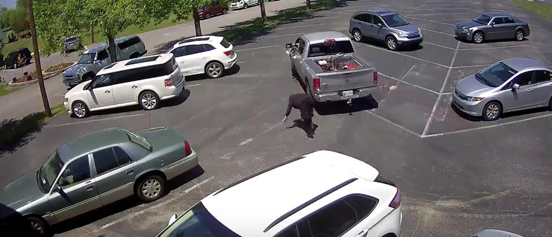 Screen Shot:Youtube:Metropolitan Nashville Police Department