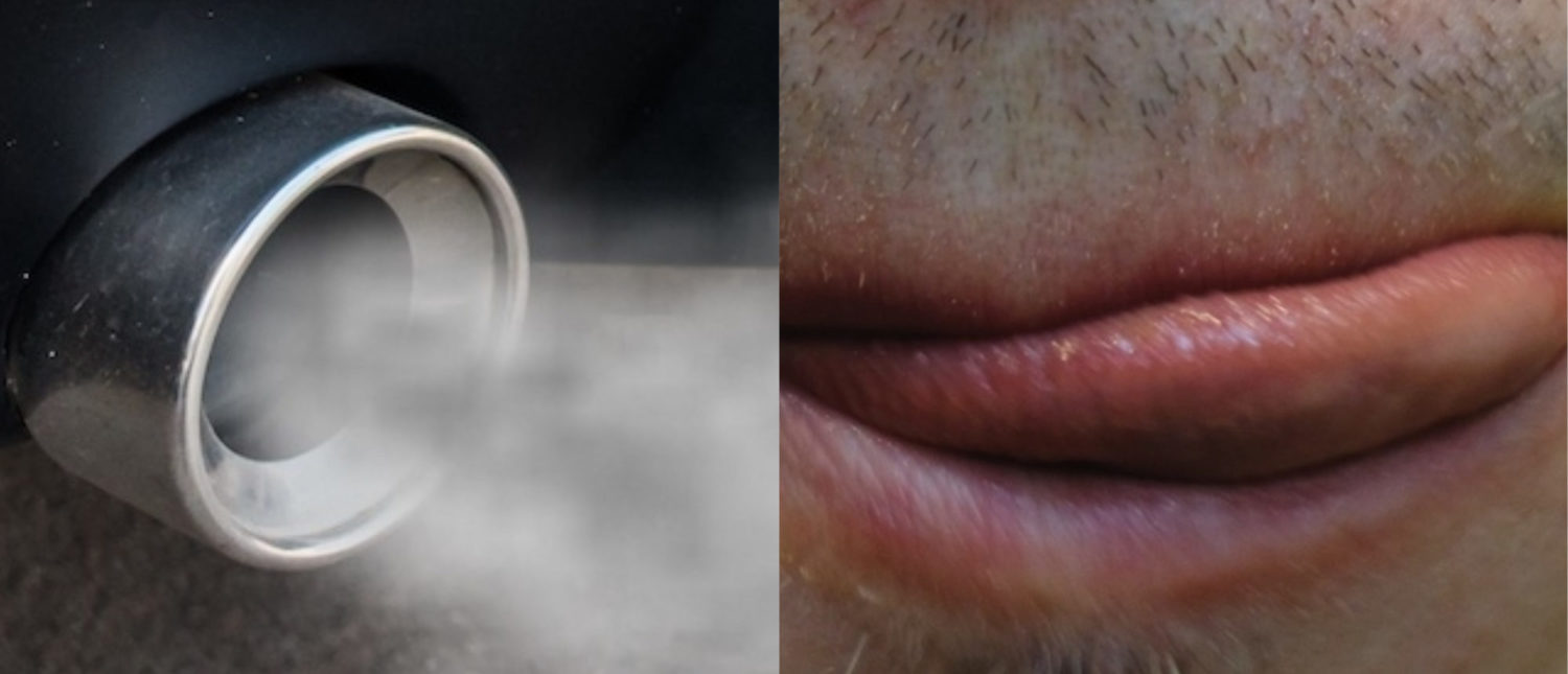 L: Car exhaust pipe comes out strongly of smoke, air pollution concept. (Shutterstock/Orlando_Stocker); R: Man chews roast meat close-up, licks his lips and smiles (Shutterstock/PERO studio)