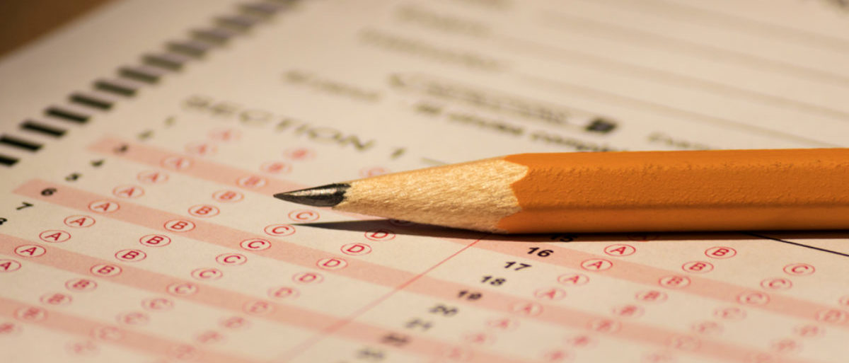 A pencil and a bubble test sheet are displayed. (Shutterstock/Kate Scott)