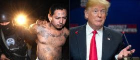 An MS-13 gang member is arrested in Mexico, and President Donald Trump speaks during an immigration roundtable May 23, 2018. (Photos: Jose CABEZAS/AFP/Getty Images and SAUL LOEB/AFP/Getty Images)