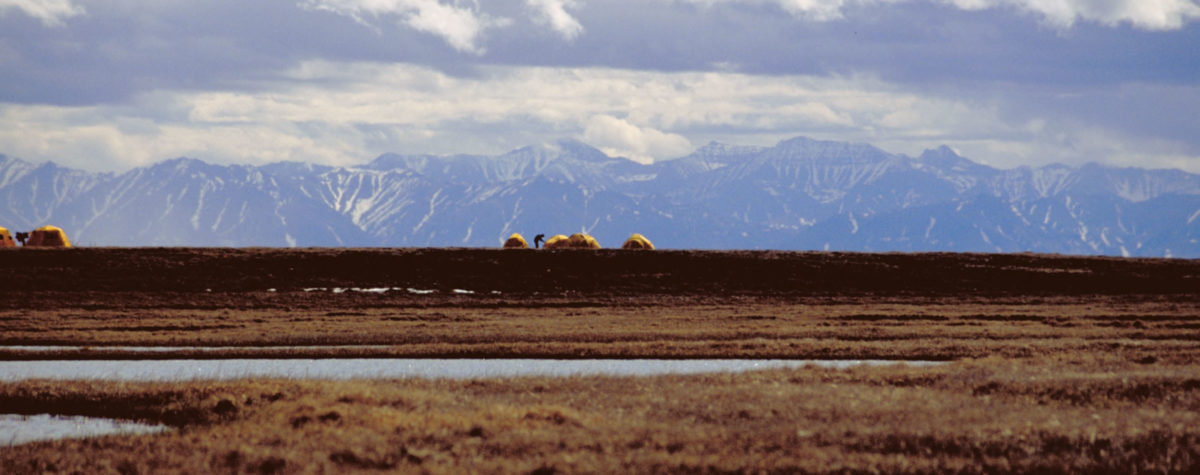The U.S. Fish and Wildlife Service bird research camp on the Canning River Delta within the 1002 Area of the Arctic National Wildlife Refuge coastal plain is seen in this undated handout photo provided by the U.S. Fish and Wildlife Service Alaska Image Library.The Brooks Range mountains, which are not part of the 1002 area, are seen in the distance. U.S. Senate Democrats succeeded in blocking, for now, a Republican plan to allow oil drilling in the 1002 area of the Arctic National Wildlife Refuge (ANWR) as part of a massive $453 billion war-time military spending bill. EDITORIAL USE ONLY REUTERS/HANDOUT/U.S.