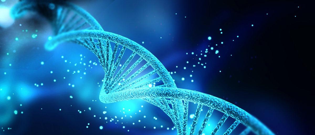 Digital illustration of a DNA structure. (Image: Shutterstock.com)