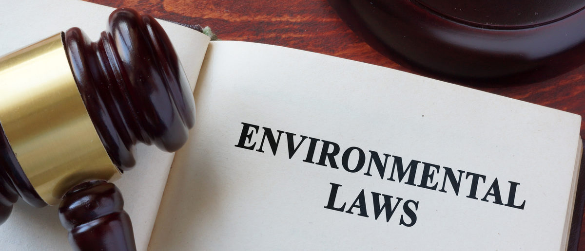 Environmental law title on a book and gavel. (Shutterstock/designer491)
