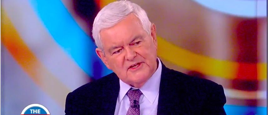 Newt Gingrich Schools 'The View' On The Most Misunderstood ...