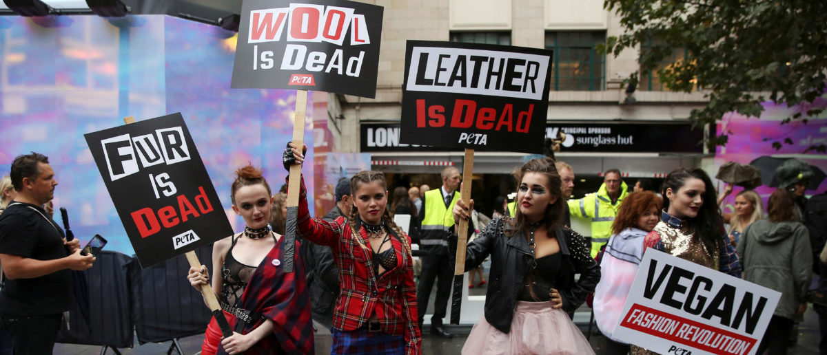 Models hold placards as they demonstrate against the use of fur and leather in clothing at a protest organised by PETA at London Fashion Week Spring/Summer 2017 in London, Britain September 16, 2016. REUTERS/Neil Hall