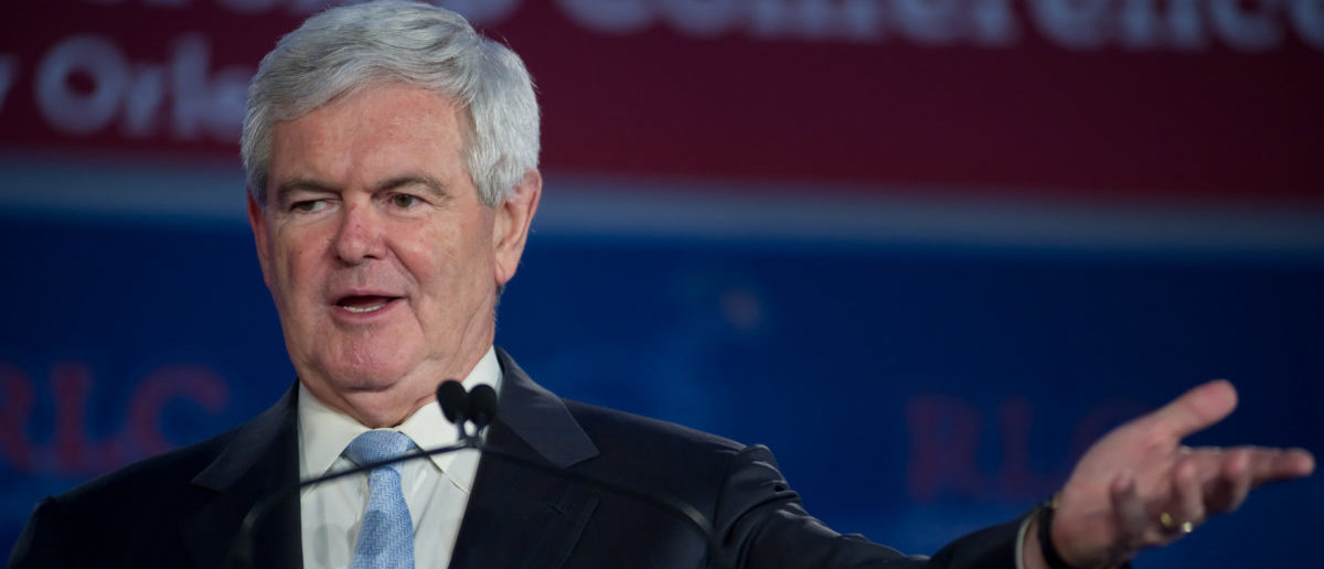 Presidential candidate Newt Gingrich addresses the Republican Leadership Conference on June 16, 2011 at the Hilton Riverside New Orleans in New Orleans, LA -- ShutterStock -- Christopher Halloran