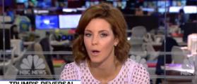 MSNBC Anchor Fact Checks Random Trump Supporters