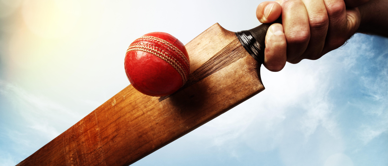 Cricket mallot and ball (Shutterstock/Brian A Jackson)