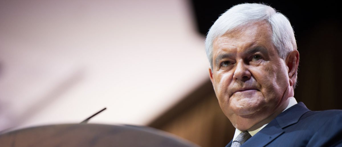 Newt Gingrich Gets Real With Left Wing Illegal Immigrants ...