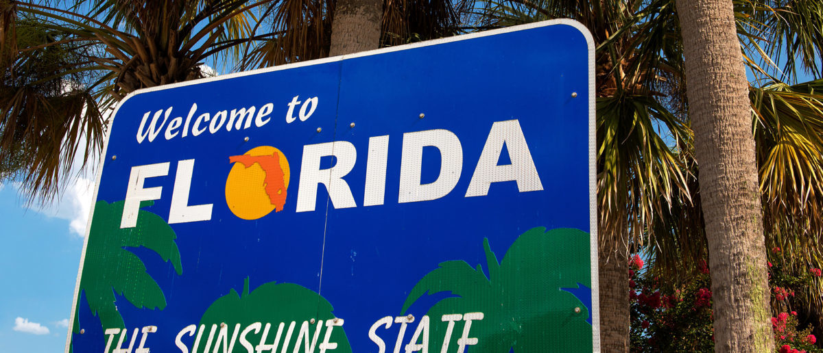 A sign for Florida stands in front of trees. Image via Shutterstock user Ingo70