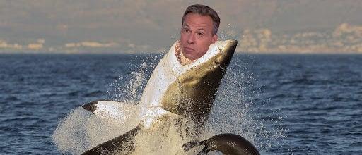 Jake Tapper Eaten By Shark (Shutterstock and CNN Screenshot)