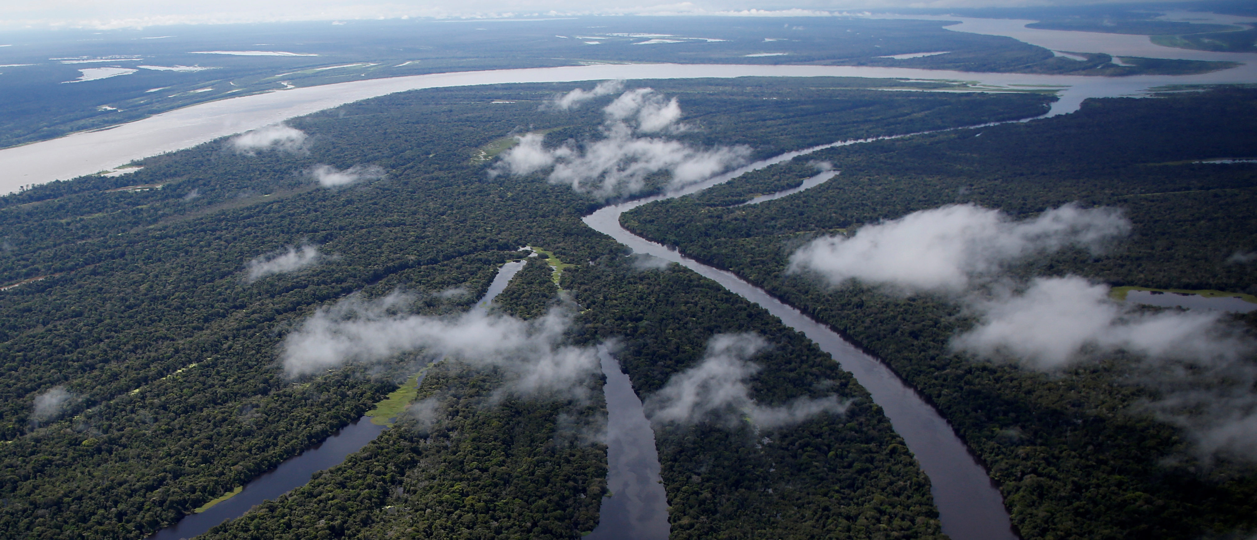The Mamiraua Sustainable Development Reserve is seen in Uarini, Amazonas state, Brazil, May 16, 2016. REUTERS/Bruno Kelly
