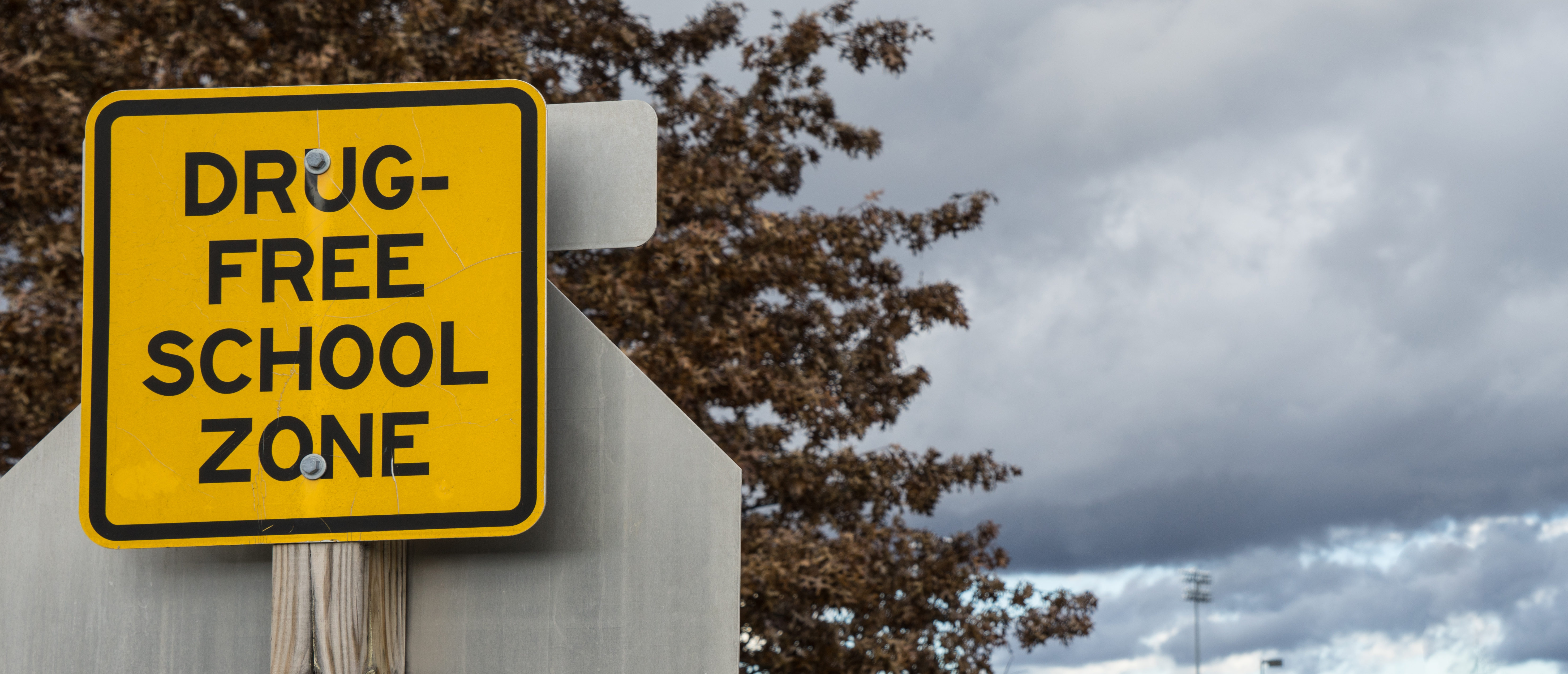 Drug free school sign (Shutterstock/Timur Laykov)