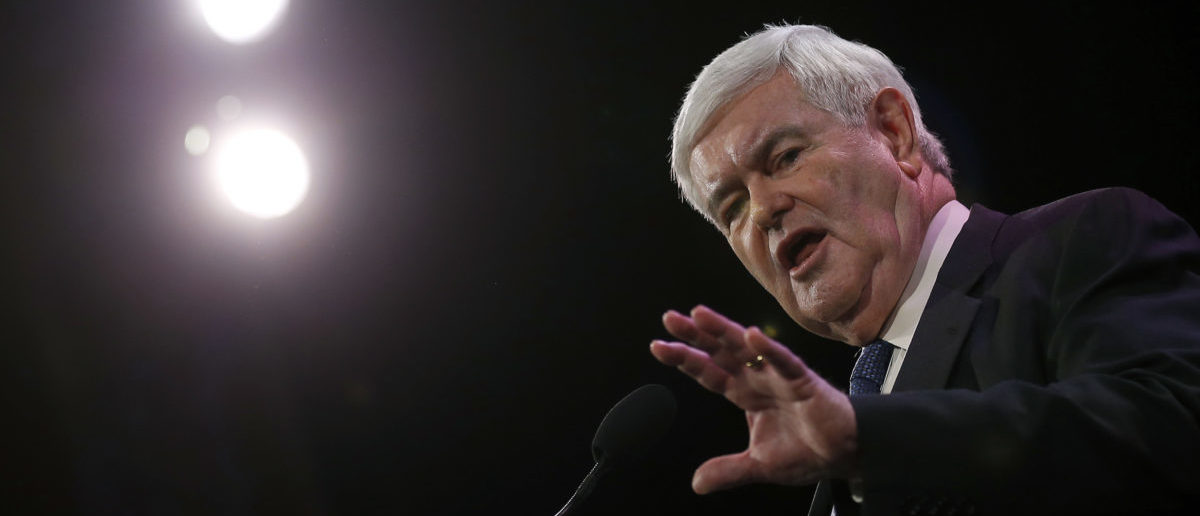 Former Speaker of the House Newt Gingrich speaks at the Freedom Summit in Des Moines, Iowa, January 24, 2015. REUTERS/Jim Young (UNITED STATES - Tags: POLITICS) - GM1EB1P0CC001