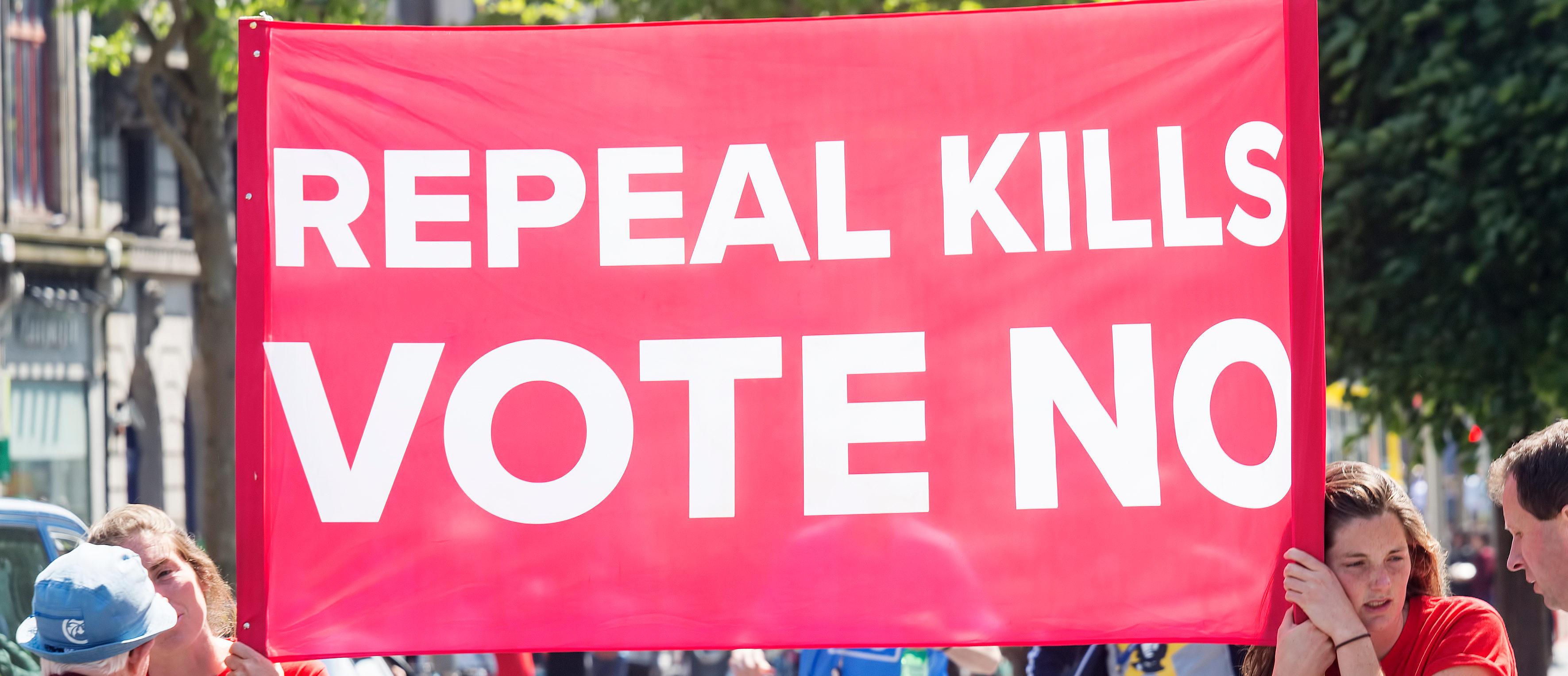 Irish Banner Opposing Abortion (Shutterstock/Bartosz Luczak)
