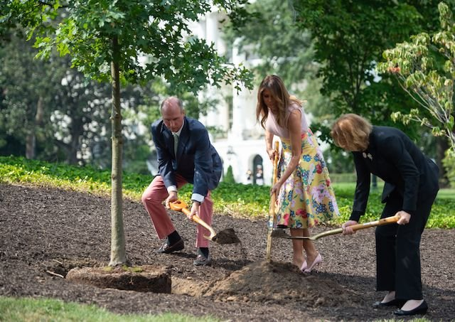 US First Lady Melania Trump participates in a tree planting ceremony alongside Mary Jean Eisenhower, granddaughter of President Dwight Eisenhower and Richard Emory Gatchell, Jr., a fifth generation grandson of President James Monroe (L), as they use shovels to put dirt on a sapling from the original Eisenhower Oak tree that was removed from the grounds last year, on the South Lawn of the White House in Washington, DC on August 27, 2018, (Photo credit: SAUL LOEB/AFP/Getty Images)