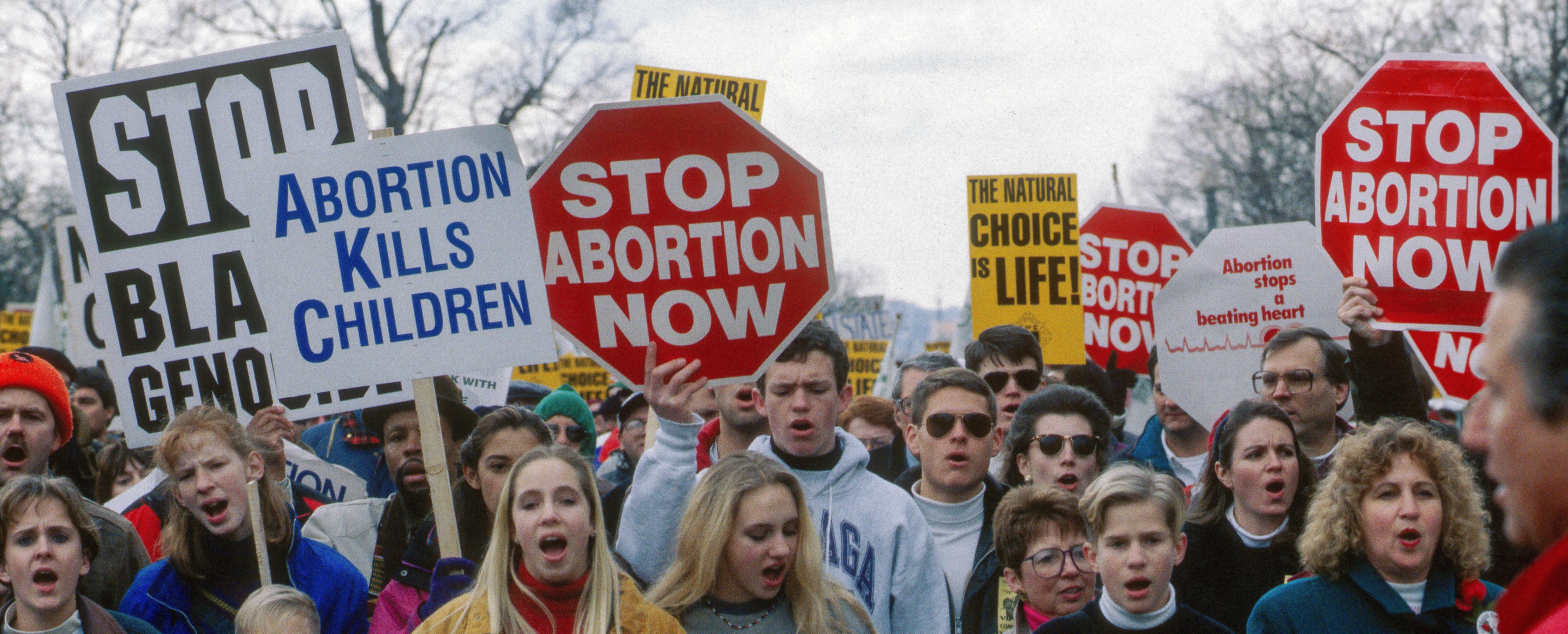 Protests against Roe V Wade (Shutterstock/mark Feinstein)