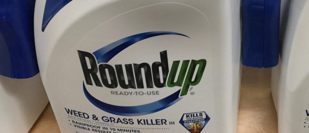 Monsanto Co's Roundup is shown for sale in Encinitas, California, U.S., June 26, 2017. REUTERS/Mike Blake/File Photo