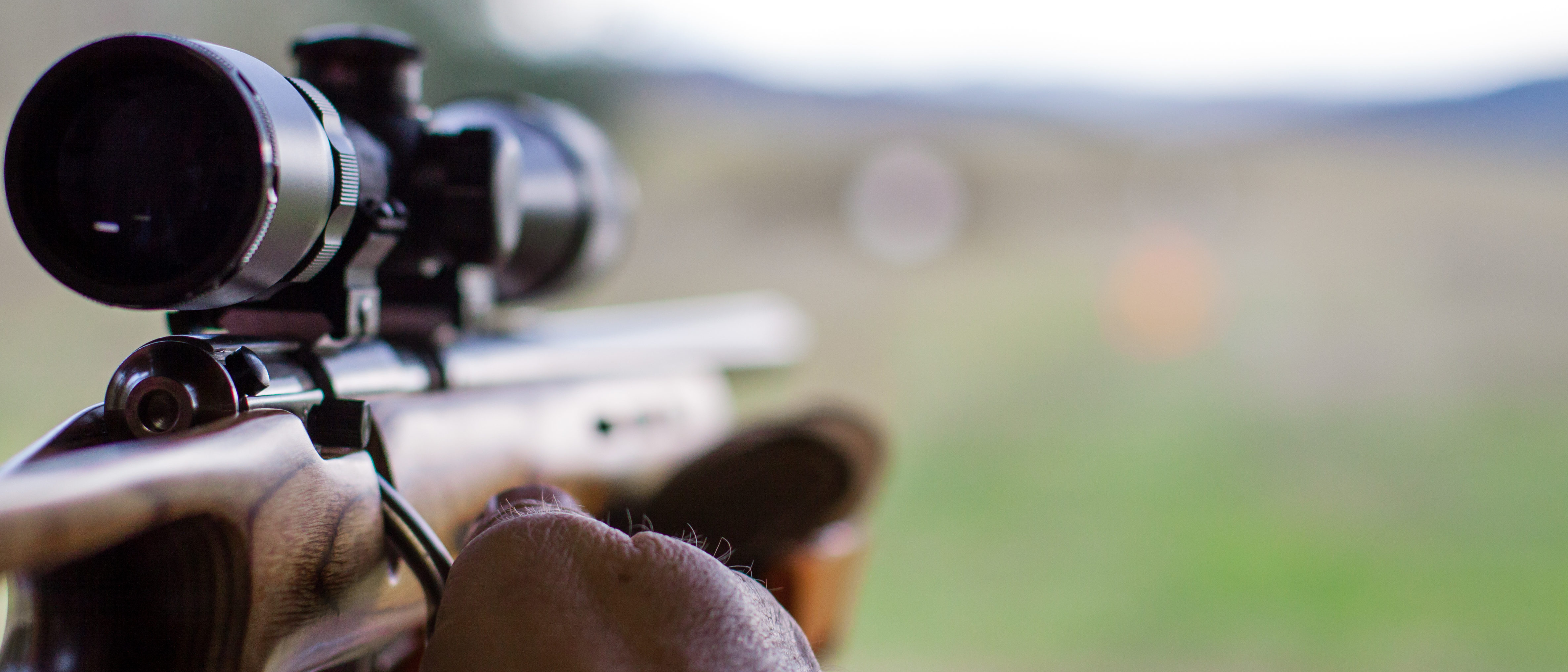 Rifle pointing at range (Shutterstock/jmwalker)
