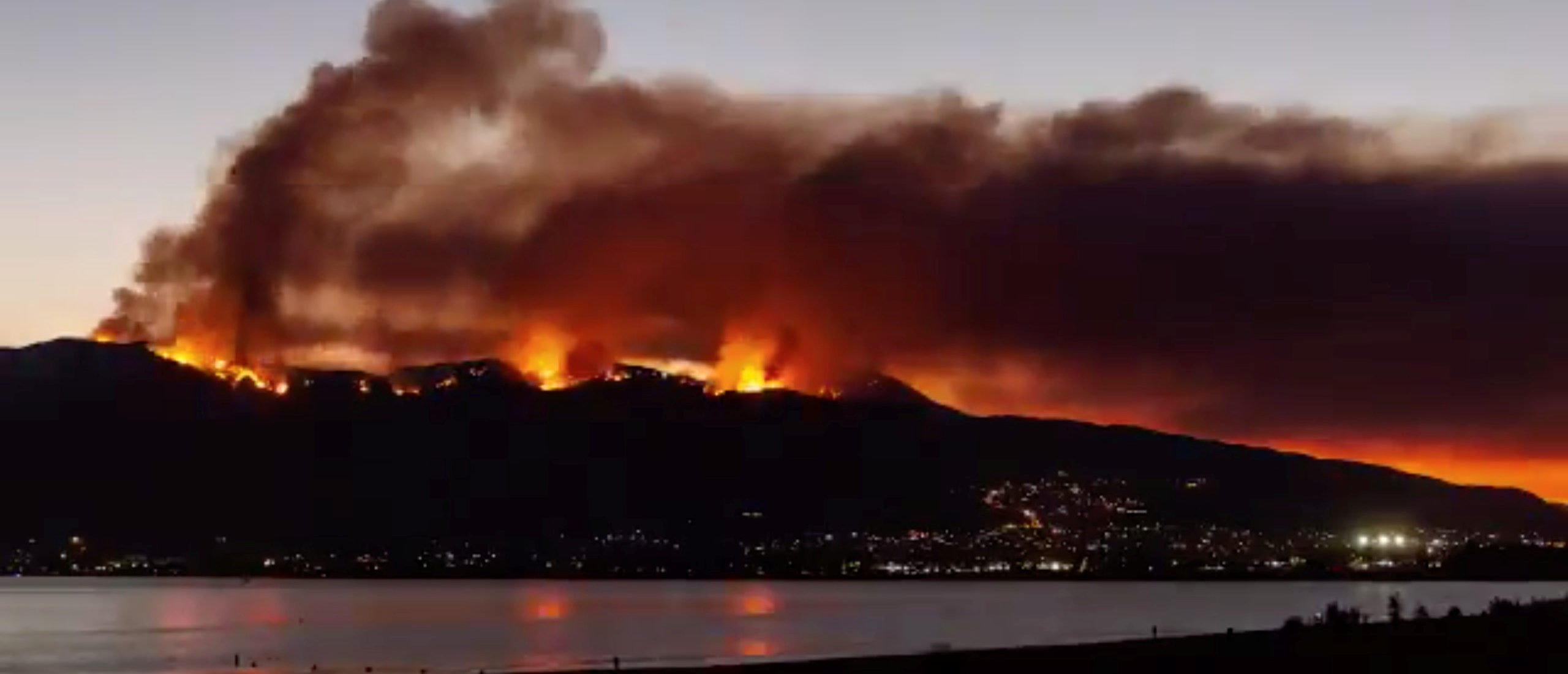 Scientist Calls Out Media 'Misinformation' On Wildfires And Global Warming