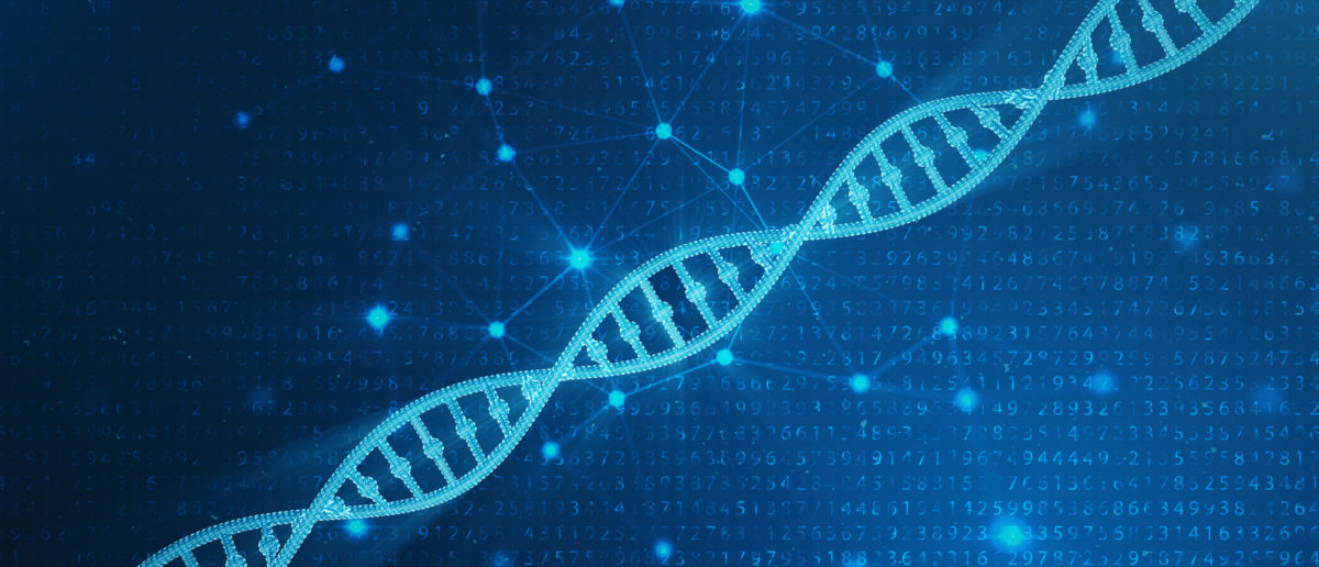 A strand of DNA rests against a blue background. Shutterstock image via user Rost9