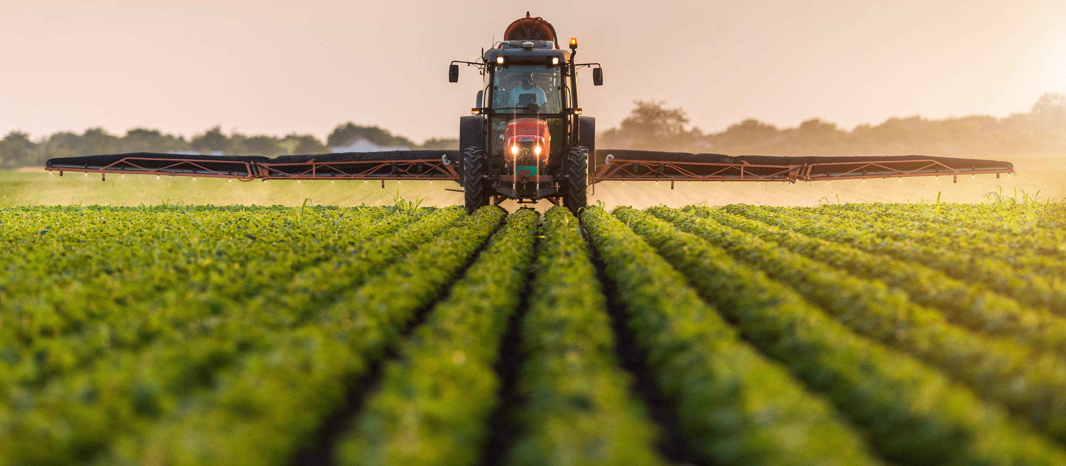 Spraying pesticides on soybean crop/ Shutterstock