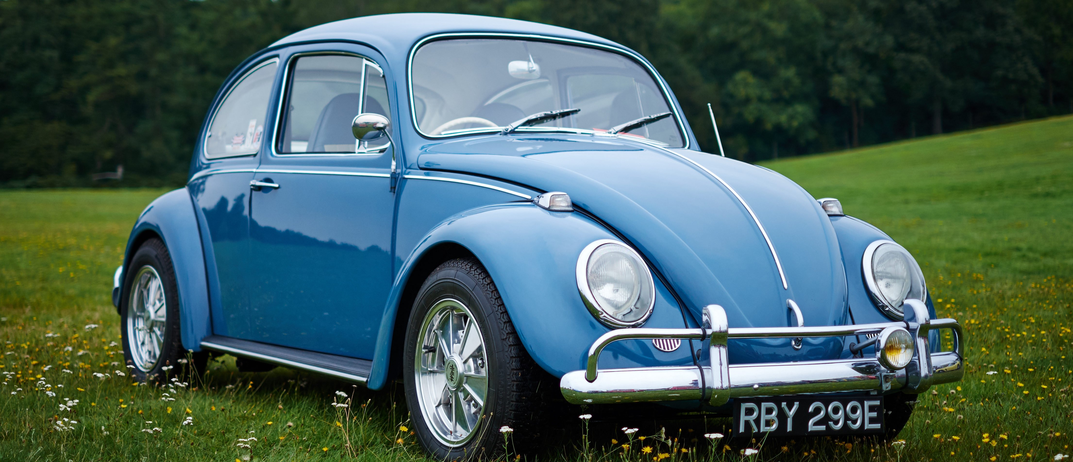 bugs volkswagen announces   beetle production  daily caller