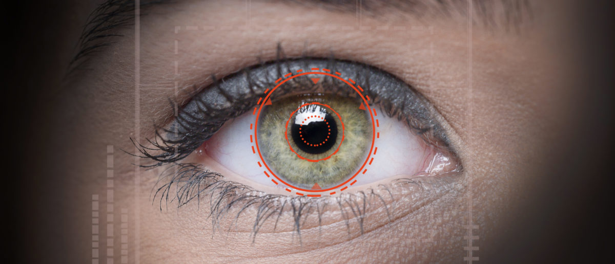 A retina is scanned. Shutterstock image via user rimom