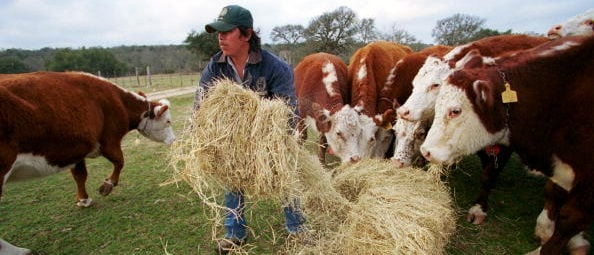 OPINION: In Defense Of Checkoff Programs (Photo by Joe Raedle/Newsmakers)