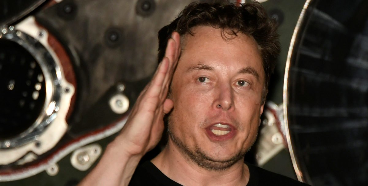 'Plant A Seed Day': Elon Musk's Brother Short Circuits After Fox News Asks Him About Tesla