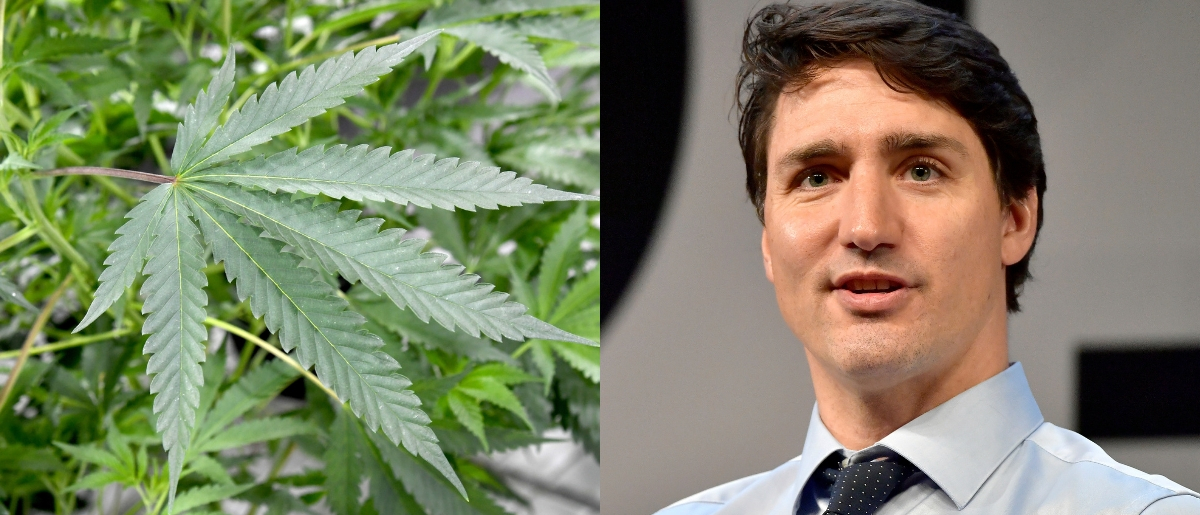 Canadian Prime Minister Justin Trudeau has admitted to using marijuana illegally. Ethan Miller/Getty Images and Paul Marotta/Getty Images for MIT Solve