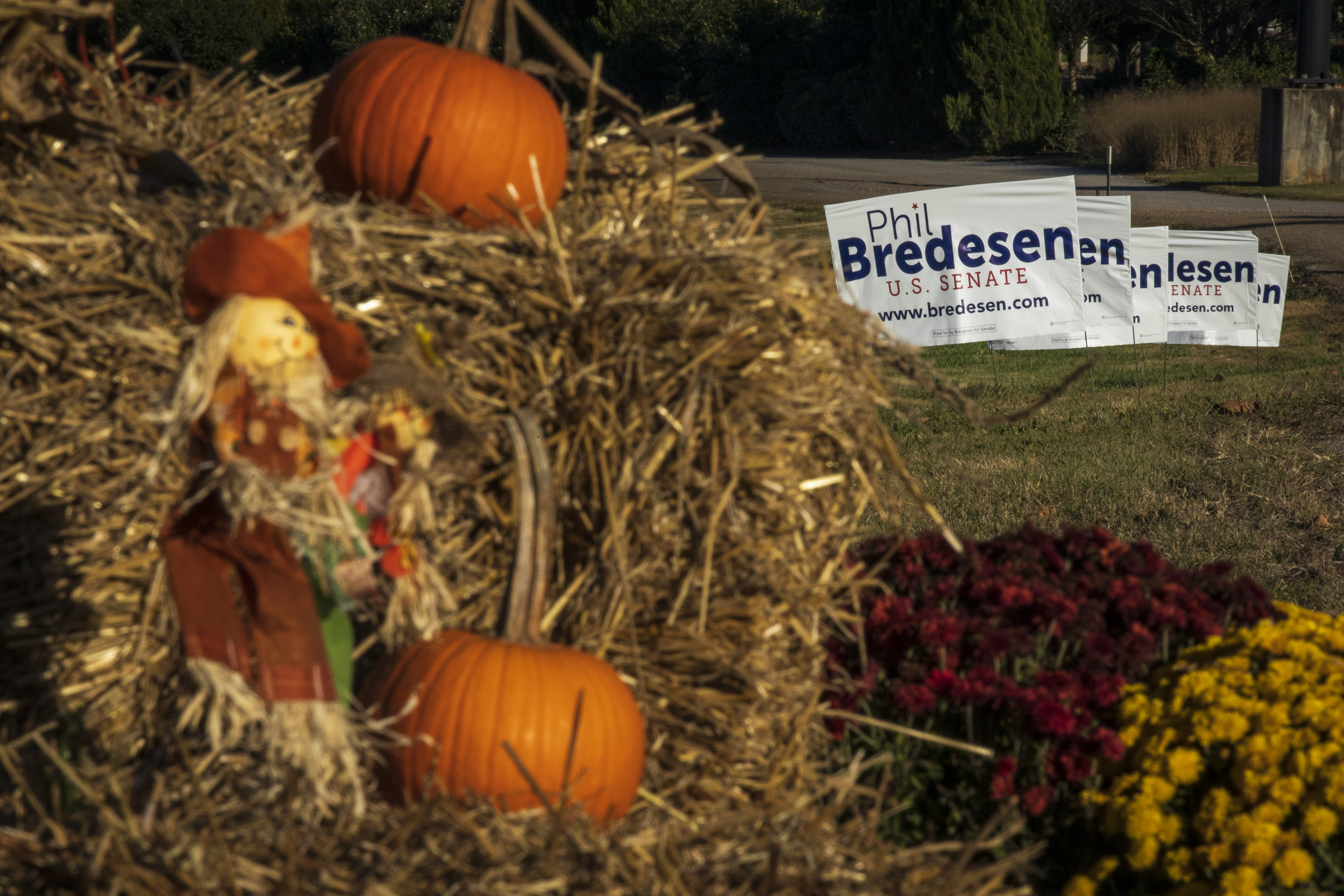 MURFREESBORO, TN - OCTOBER 29: Halloween decorations and signs supporting Democratic candidate for U.S. Senate Phil Bredesen line the road before a Get-Out-The-Vote rally, October 29, 2018 in Murfreesboro, Tennessee. Bredesen, a former governor of Tennessee, is running in a tight race against U.S. Rep. Marsha Blackburn (R-TN) to fill the seat left open by Sen. Bob Corker (R-TN), who opted not to seek reelection. (Photo by Drew Angerer/Getty Images)